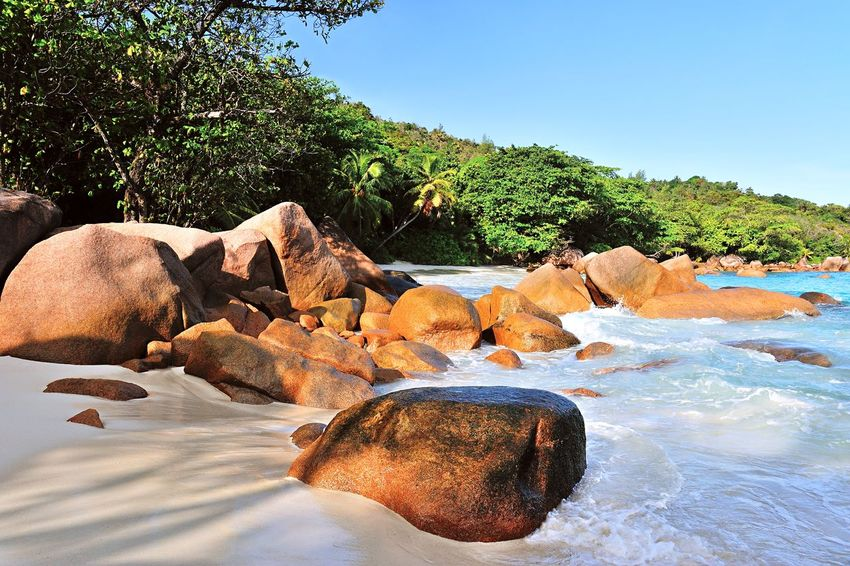 Beach Anse Lazio on Praslin, Seychelles Beach Day Destination Dreamy Exotic Landscape Lonely Lonesome Luxury Nature Nature Outdoors Place Remote Rock Scenic Scenics Sea Shore Tranquility Travel Traveling Tree Tropical Water