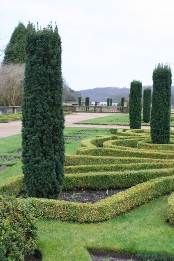 Beauty In Nature Day Formal Garden Garden Path Grass Green Color Growth Hedge Nature No People Outdoors Plant Sky Topiary Tree