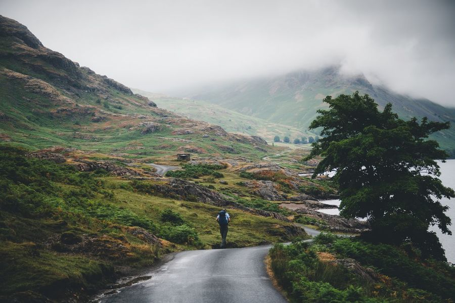 Hiking day. Britain Lake District Plant Scenics - Nature Road Nature Beauty In Nature Sky Fog The Way Forward Mountain Real People Direction Tree Landscape Environment One Person Tranquil Scene Transportation Growth Land Outdoors