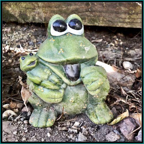 Frog Statue 🍃🐸🌿 Frog Statue GardenStatue Cute GardenOrdement Ordement Frogs 🐸🌿🍃