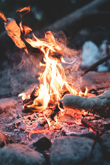 Evening campfire with friends Burning Fire Flame Heat - Temperature Fire - Natural Phenomenon Wood Nature Log Firewood Glowing Bonfire Wood - Material Motion Orange Color No People Close-up Event Environment Outdoors Campfire