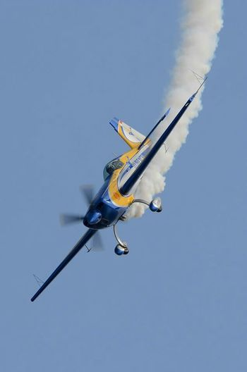 Free Flight World Master Airplane Aircraft Avion Biscarrosse Metting Acrobatic Gironde France