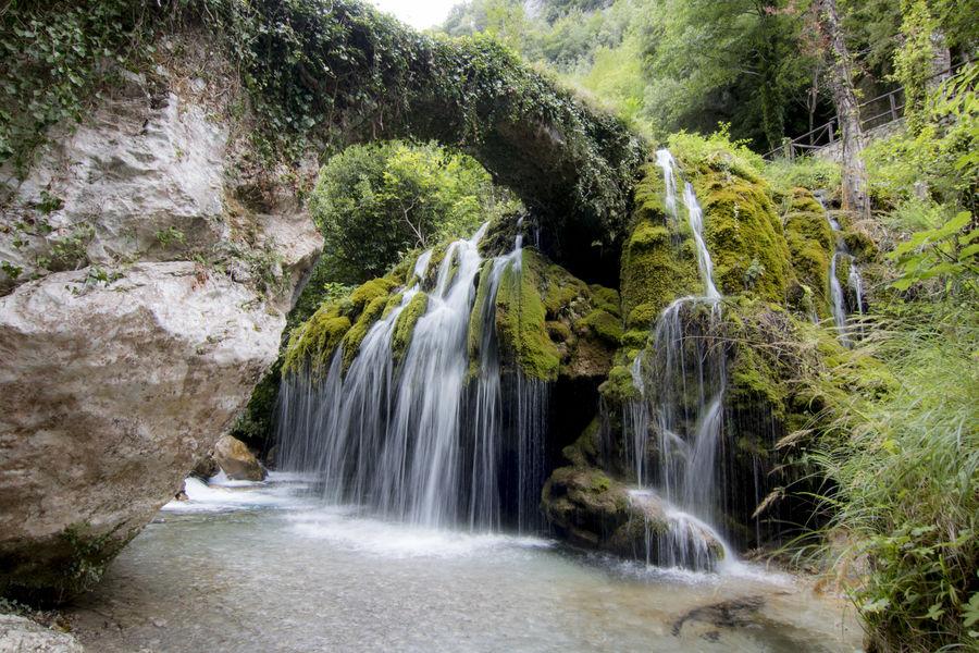 Capelli di Venere waterfalls Capelli Di Venere Nature Waterscape Casaletto Spartano Cilento Landscape Waterfall Waterfall_collection Waterfalls Waterscapes