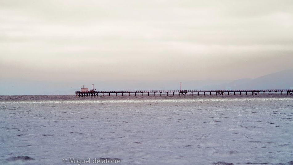 marina view. Overcast Marina Bay Area Bayarea Oakland Bay Windy Mellow Landscape Gitmesteak Lifesarepost