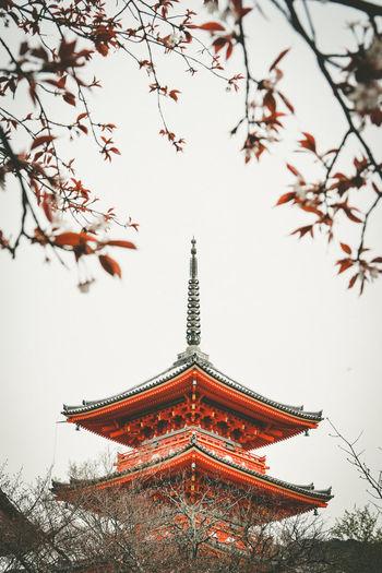 Kiyomizudera Temple วัดน้ำใส เกียวโต Kiyomizudera Temple Kyoto,japan Temple Temple Japan Temple Kyoto Japanese Temple