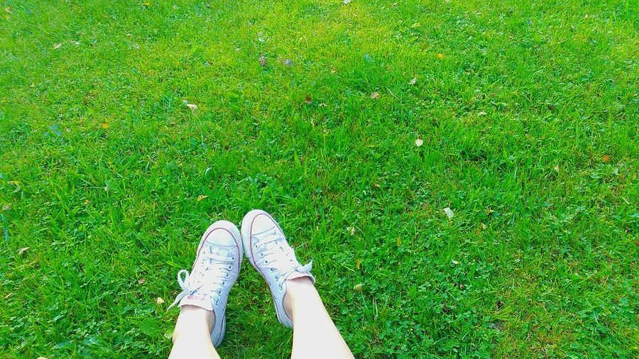Converse All Star White With Green Grass