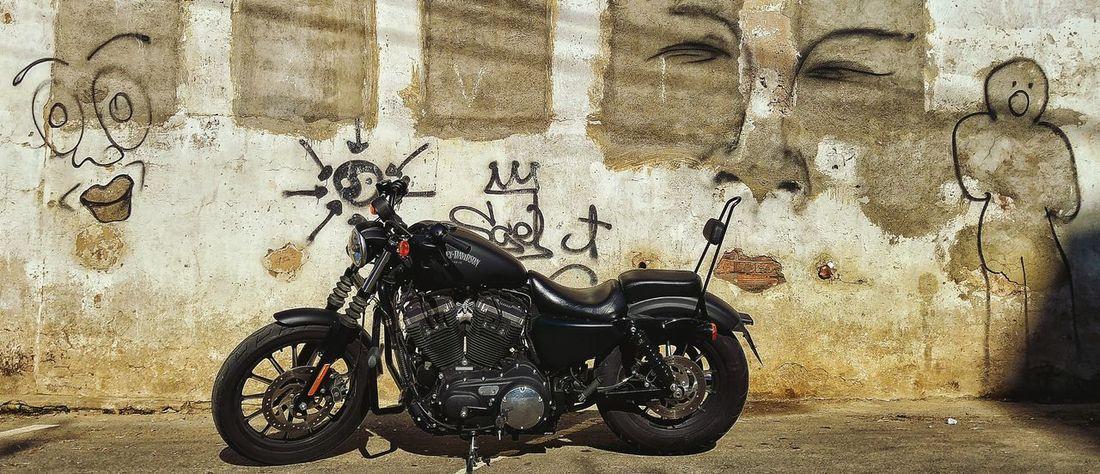 Euskalherria Euskadi Barakaldo Harley Davidson Sportster