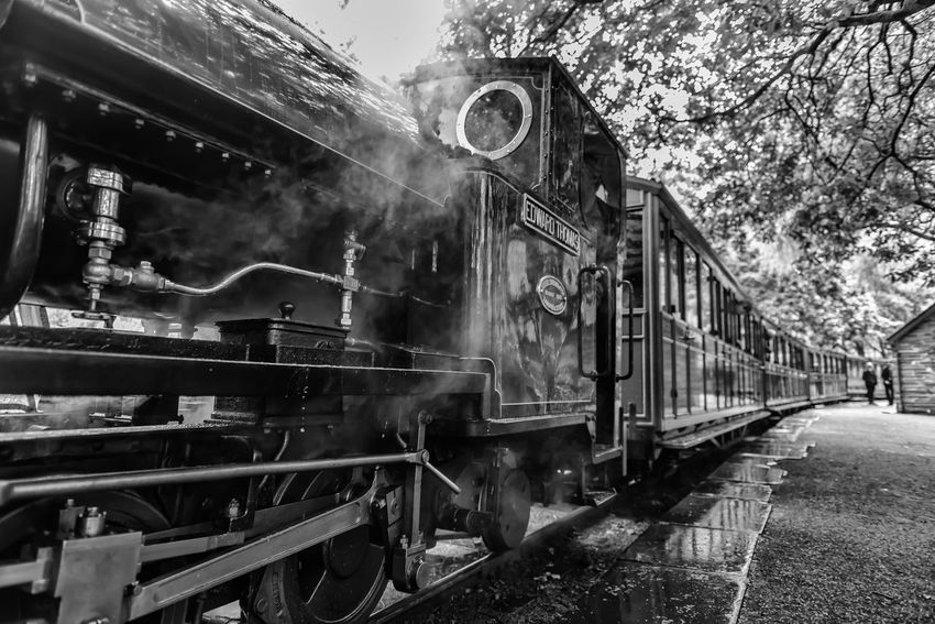 Steam train in the station Locomotive Mode Of Transport Monochrome Monochrome Photography No People Outdoors Public Transportation Rail Transportation Railroad Track Steam Train Train - Vehicle Transportation EyEmNewHere