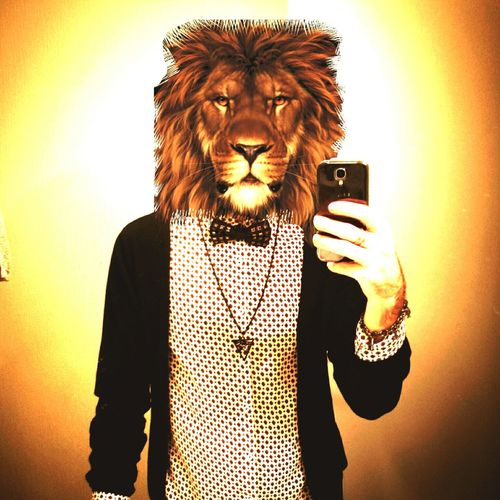 - Like Lion - Lion Lyon Animals ZodiacSign Kesha First Eyeem Photo