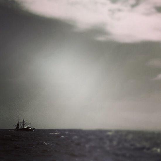 Edisto Beach, SC Shrimp Boat Edisto Beach Shrimp Boat Vikki Bradley O'Keefe Art