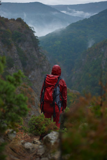 Rear view of person walking on mountain
