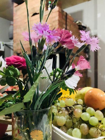 Flower Flowering Plant Plant Freshness Vase Indoors  No People
