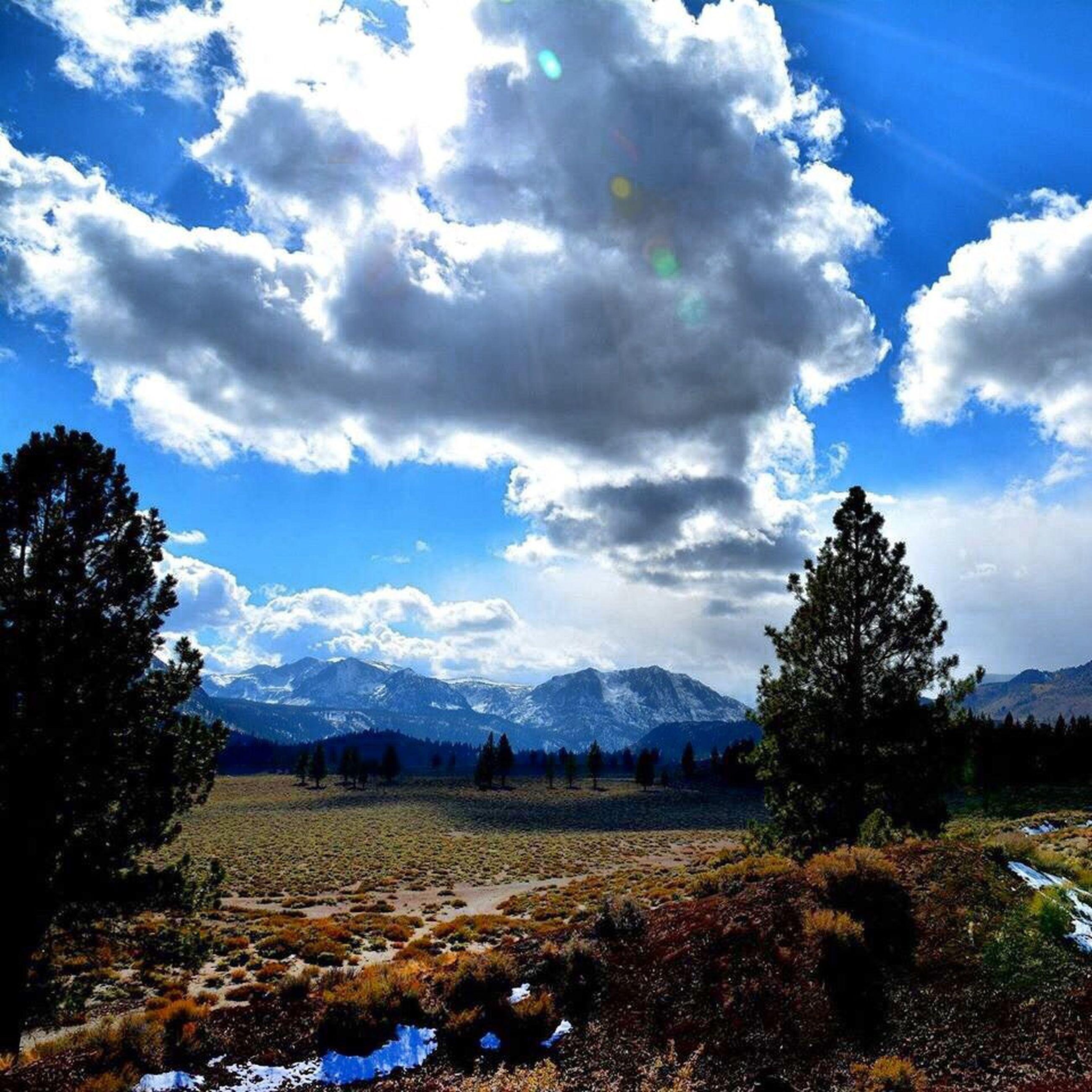 sky, tranquil scene, landscape, tranquility, cloud - sky, scenics, beauty in nature, nature, cloud, blue, mountain, tree, field, non-urban scene, sunlight, day, cloudy, remote, idyllic, non urban scene