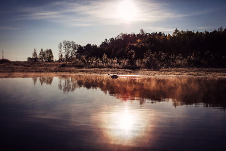 Beauty In Nature Canonphotography Day Discover Your City Lake Light And Shadow Nature No People Outdoors Reflection Scenics Sky Sun Sunlight Sunset The Week Of Eyeem Tranquil Scene Tranquility Travel Tree Water Waterfront