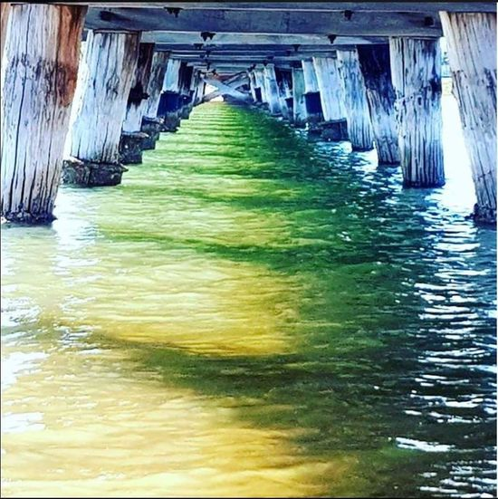Under the jetty. Water Architecture Built Structure Pier Rippled Waterfront Ocean Jetty Wooden Post Underneath A New Beginning