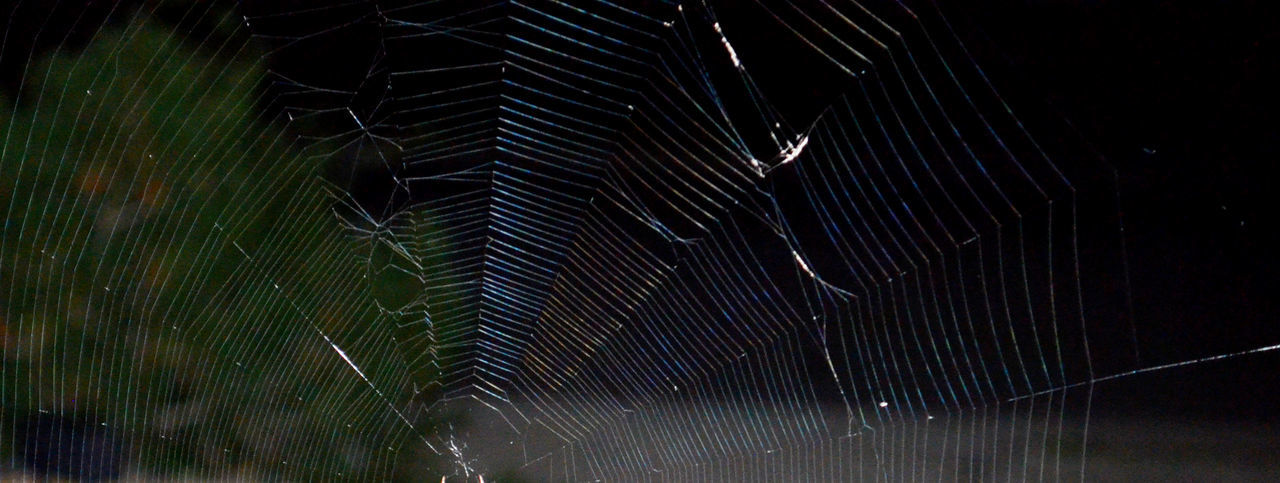 no people, outdoors, night, nature, water, close-up, star trail