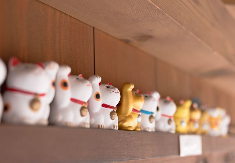 """""""招き猫"""" manekineko Japanese  Japan Photography Japan Cat Ise Okageyokocho Canon Canon_photos Canonphotography Canon_official Canon Photography Canoneos6d EyeEm Selects City"""