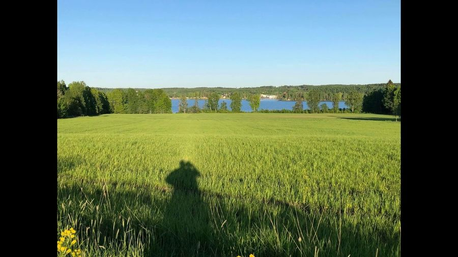 Love Möckeln Karlskoga Sverige Sweden Landscape Aker Love Plant Sky Grass Field Nature Landscape Land Day Beauty In Nature Green Color Shadow Tranquility Tree Scenics - Nature