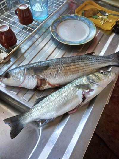 Seafood Cutting