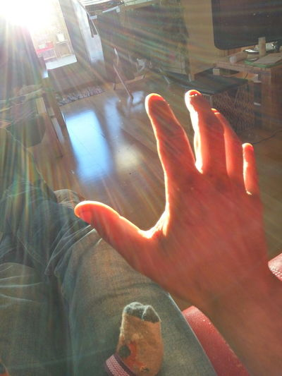 EyeEmNewHere Human Hand One Person Human Body Part People Adult Only Women One Woman Only Day Indoors  Close-up