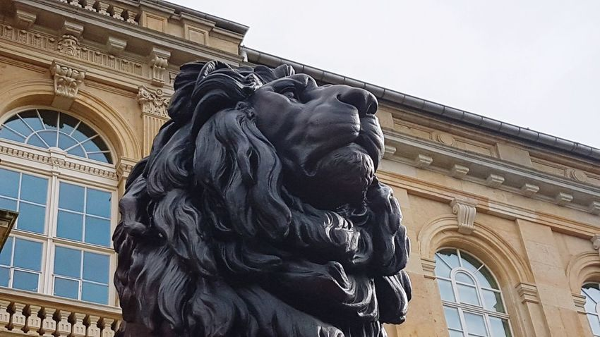 Gotha Thuringia Lion Low Angle View Statue Architecture Travel Destinations History Outdoors Sculpture Built Structure Day Building Exterior City Politics And Government No People Sky
