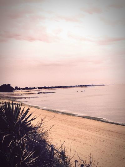 Ile D'Oleron Chill Relaxing Time The Traveler - 2015 EyeEm Awards Holidays ☀ Plage 🌴