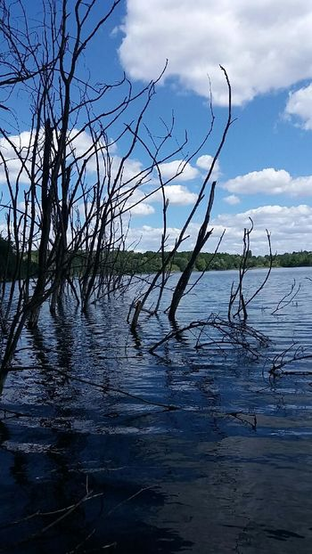 Reflection Water Lake No People Nature Tree