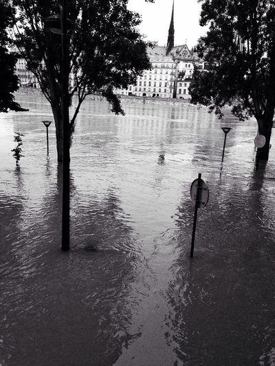 Water Water Everywhere for the Bnw_friday_eyeemchallenge Flood Paris