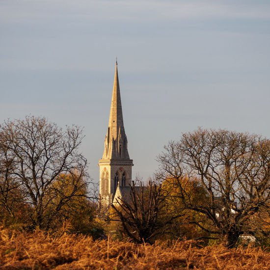 View of Saint Matthias Church from Richmond Park (TW10), London Autumn Colors Postcode Postcards Richmond Park, London Saint Matthias Church Architecture Autumn Colours Building Exterior Built Structure Day History Nature No People Outdoors Place Of Worship Religion Sky Spirituality Travel Destinations Tree