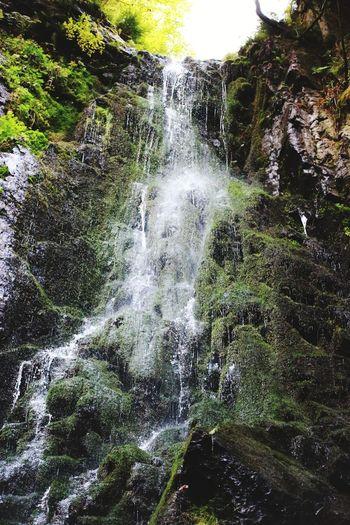 Wasserfall Water Tree Motion Forest Close-up Sky Waterfall Falling Water Splashing Droplet Water Drop Splashing