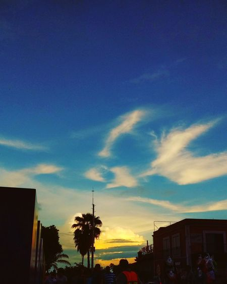 Profundity Mexico City Sky And Palm Blue Sky City Nature Sunset Cloud - Sky Sky Outdoors Built Structure Architecture Building Exterior No People Silhouette Travel Destinations Beauty In Nature Scenics Tree Multi Colored Nature Day Hedonism