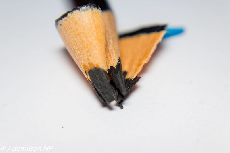 EyeEm Selects Pencil White Background Indoors  Education Studio Shot No People Close-up Pencil Shavings Day