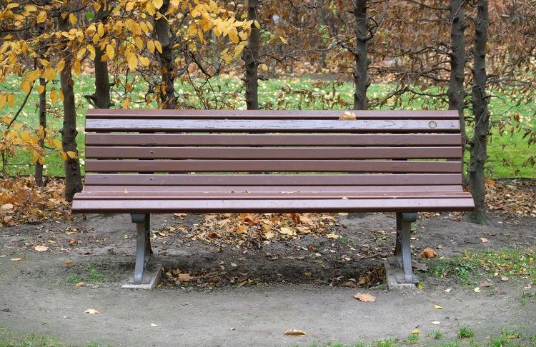 Absence Autumn Bench Change Einsamkeit Empty Footpath Leer Leere Park Park Bench Parkbank Season  Simplicity Sitting Stille Verlassen