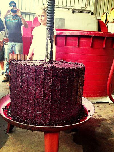 Red Pressing Wine Tasting Wine Cake