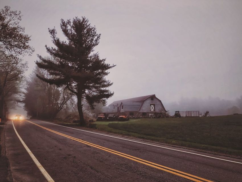 Road Trip in Farm Country on a Foggy Morning Transportation Sky Tree Nature Plant Mode Of Transportation Direction Architecture Road No People Built Structure Building Exterior Day Road Marking