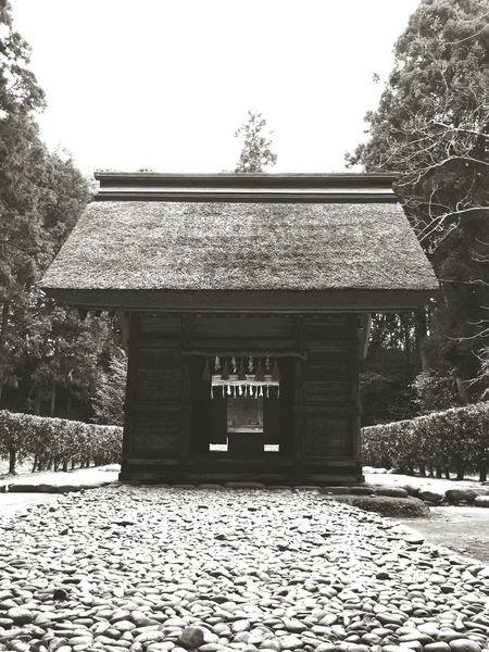桜井大神宮 4 糸島市 福岡県 Shrine Of Japan Shrine Hello World Taking Photos Relaxing Black And White Blackandwhite Photography Black & White Itoshima City Fukuoka,Japan
