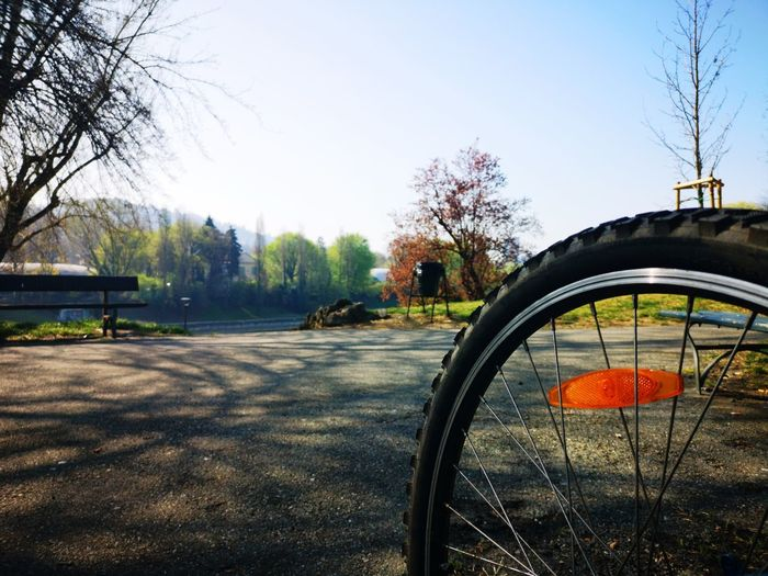 Mountain bike Wheel City Park Turin Leisure Activity Sport Action Tree Bare Tree Clear Sky Sky Parking Bicycle Rack Bicycle Tire Pedal Cycling Moving