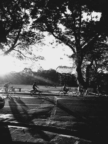 Darkness And Light Blackandwhite Bnw Black And White Peoplephotography Streetphoto_bw Eye4photography  Eyeem Philippines People Watching Hugging A Tree