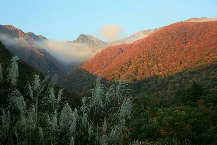紅く染まる🍁 Autumn Landscape Nature Mountains Clouds And Sky EyeEm Nature Lover Outdoors Japan Enjoying Life ~カメログまたここで~ EyeEm Best Shots Popular Photos
