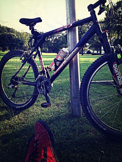 Bike Gysenberg People Watching Enjoying The Sun