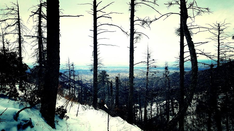 Its Cold Outside Pino Canyon Trail Albuquerque Newmexico Deadpine Sky Porn Sky_collection Showcase: January