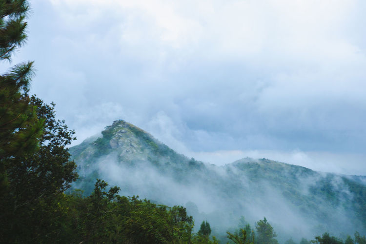 Beauty In Nature Cloud - Sky Day Environment Fog Idyllic Land Landscape Mountain Mountain Peak Nature No People Non-urban Scene Outdoors Plant Scenics - Nature Sky Tranquil Scene Tranquility Tree