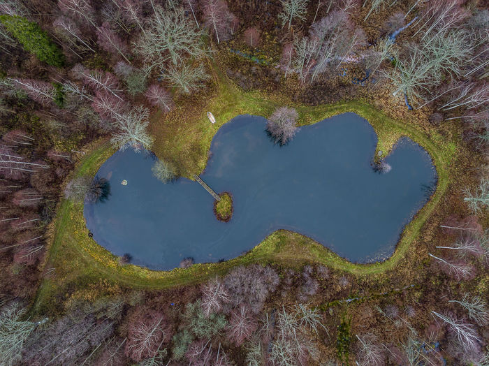 My own lake Aerial Shot Autumn Drone  Sweden Winter Aerial Photography Aerial View Animal Themes Beauty In Nature Boat Day Dronephotography High Angle View Lake Nature No People Outdoors Sweden Nature Tree Water Öland
