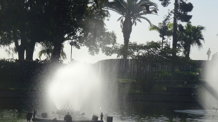View of fountain in swimming pool