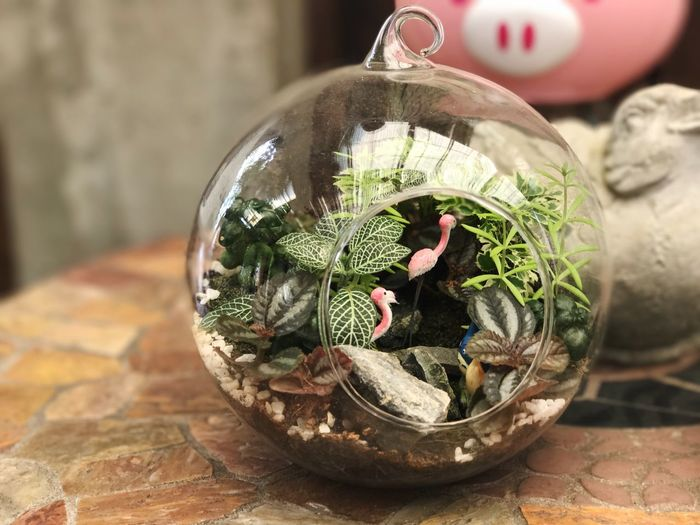 Focus On Foreground Indoors  Close-up No People Table Day Globe Christmas Bauble Nature