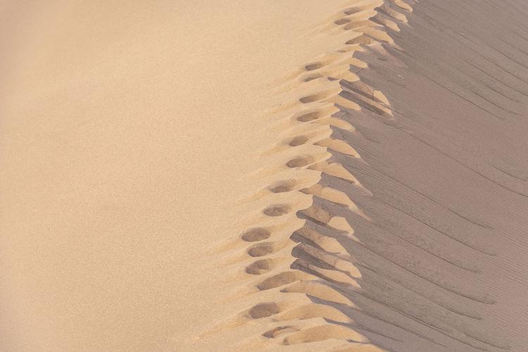 Footprints on sand in desert