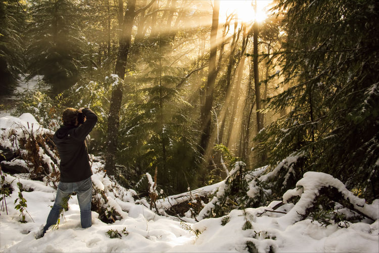 Man standing on snow covered land in forest