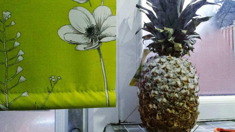 Pineapple Snow Mould Kitchen Window Green Floral