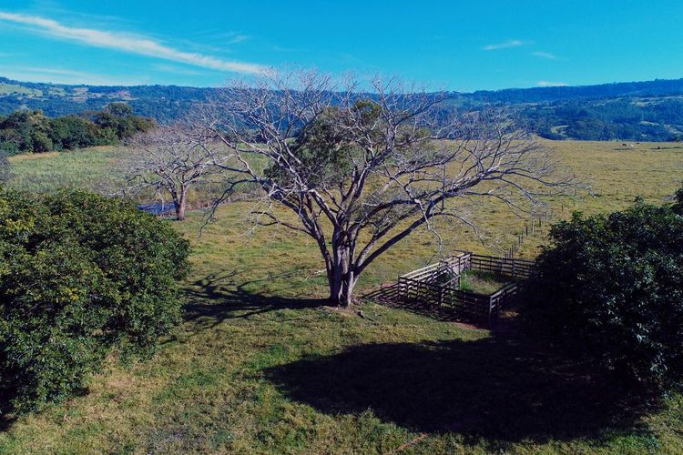 Coisas da Roça Rural Scene Rural Drone  Dronephotography Aerial View Aerial Shot Aerial Photography Clouds And Sky Sun Blue Sky Paradise Nature Landscape Beauty In Nature No People Day Scenics Outdoors Sky Grass Tree Shades Of Winter