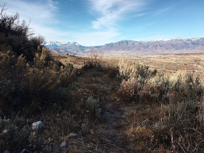 sunday trail run. nice and pleasant today. Wasatch County Utah